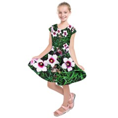 Pink Flowers Over A Green Grass Kids  Short Sleeve Dress