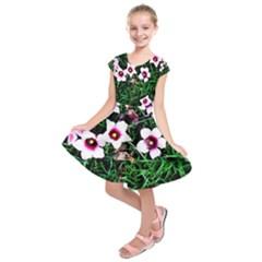 Pink Flowers Over A Green Grass Kids  Short Sleeve Dress