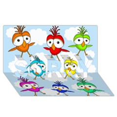 Cute Colorful Birds  Sorry 3d Greeting Card (8x4)