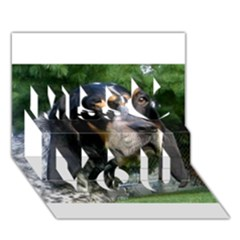 Bluetick Coonhound Miss You 3D Greeting Card (7x5)