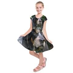 Bluetick Coonhound Kids  Short Sleeve Dress