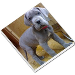Great Dane Puppy Blue Small Memo Pads