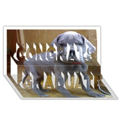 Great Dane Puppy Blue Congrats Graduate 3D Greeting Card (8x4)