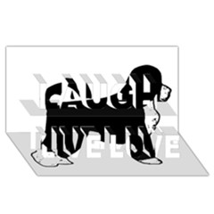 Portugese Water Dog Color Silhouette Laugh Live Love 3D Greeting Card (8x4)