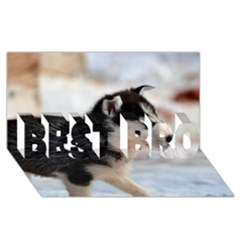 Siberian Husky Puppy BEST BRO 3D Greeting Card (8x4)