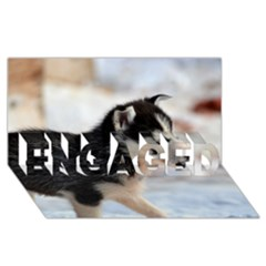 Siberian Husky Puppy ENGAGED 3D Greeting Card (8x4)