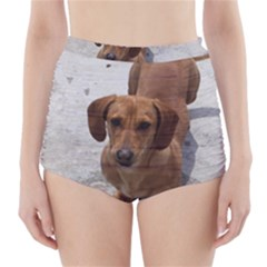 Dachshund Full High Waisted Bikini Bottoms