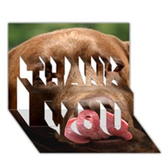 Chocolate Lab THANK YOU 3D Greeting Card (7x5)