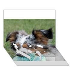 Blue Merle Miniature American Shepherd LOVE Bottom 3D Greeting Card (7x5)