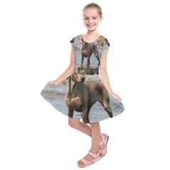 Weimaraner In Water Kids  Short Sleeve Dress