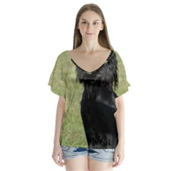 Black Cocker Spaniel Sitting Flutter Sleeve Top