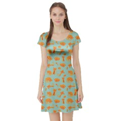 Cute Cat Animals Orange Short Sleeve Skater Dress