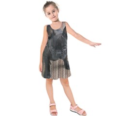 Brindle French Bulldog Sitting Kids  Sleeveless Dress