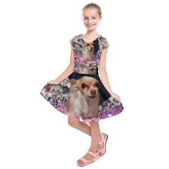 Chi Chi In Flowers, Chihuahua Puppy In Cute Hat Kids  Short Sleeve Dress