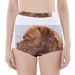 Dogue De Bordeaux 2 High Waisted Bikini Bottoms