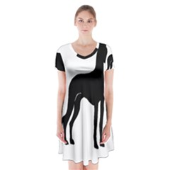 Ibizan Hound Silo2 Short Sleeve V Neck Flare Dress