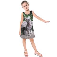 Chinese Crested Dog Sitting 2 Kids  Sleeveless Dress