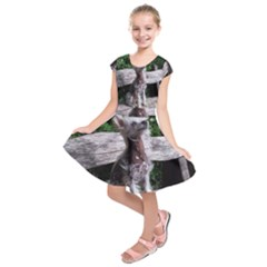 Chinese Crested Dog Sitting 2 Kids  Short Sleeve Dress