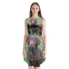 Chocolate Lab Pup Sleeveless Chiffon Dress
