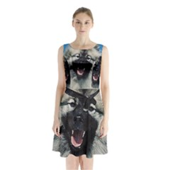 Keeshond Sleeveless Chiffon Waist Tie Dress