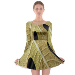Yellow Leaf Fig Tree Texture Long Sleeve Skater Dress