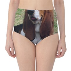 Basset Hound Sitting  High-Waist Bikini Bottoms