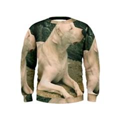 Dogo Argentino Laying  Kids  Sweatshirt
