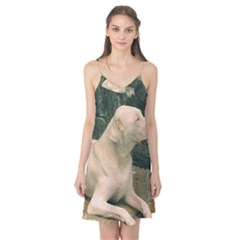 Dogo Argentino Laying  Camis Nightgown