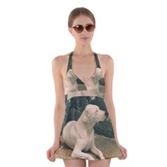 Dogo Argentino Laying  Halter Swimsuit Dress