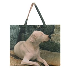 Dogo Argentino Laying  Zipper Large Tote Bag