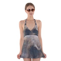 Whippet Brindle Eyes  Halter Swimsuit Dress
