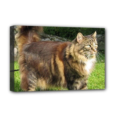 Norwegian Forest Cat Full  Deluxe Canvas 18  x 12