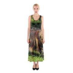 Norwegian Forest Cat Full  Sleeveless Maxi Dress