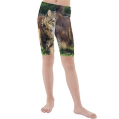 Norwegian Forest Cat Full  Kids  Mid Length Swim Shorts