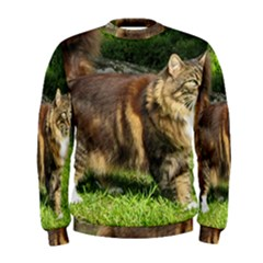 Norwegian Forest Cat Full  Men s Sweatshirt