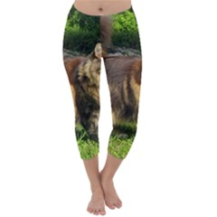 Norwegian Forest Cat Full  Capri Winter Leggings