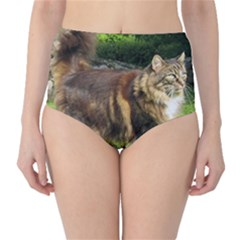 Norwegian Forest Cat Full  High-Waist Bikini Bottoms