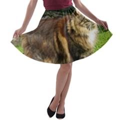 Norwegian Forest Cat Full  A-line Skater Skirt