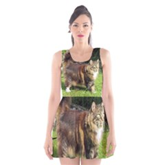 Norwegian Forest Cat Full  Scoop Neck Skater Dress