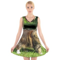 Norwegian Forest Cat Full  V-Neck Sleeveless Skater Dress