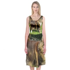 Norwegian Forest Cat Full  Midi Sleeveless Dress