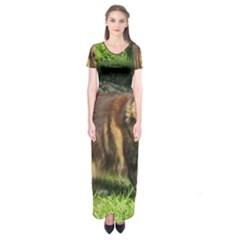 Norwegian Forest Cat Full  Short Sleeve Maxi Dress