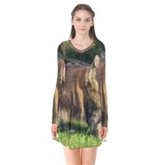 Norwegian Forest Cat Full  Flare Dress