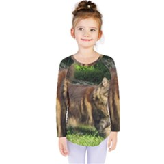 Norwegian Forest Cat Full  Kids  Long Sleeve Tee
