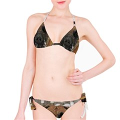 Boerboel  Bikini Set