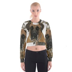 Boerboel  Women s Cropped Sweatshirt