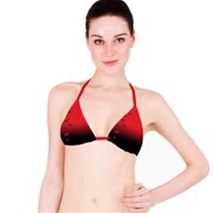 Lepidopteran Bikini Top