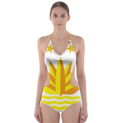National Emblem of Bangladesh Cut-Out One Piece Swimsuit