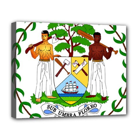 Coat of Arms of Belize Deluxe Canvas 20  x 16