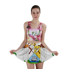 Coat of Arms of Belize Mini Skirt